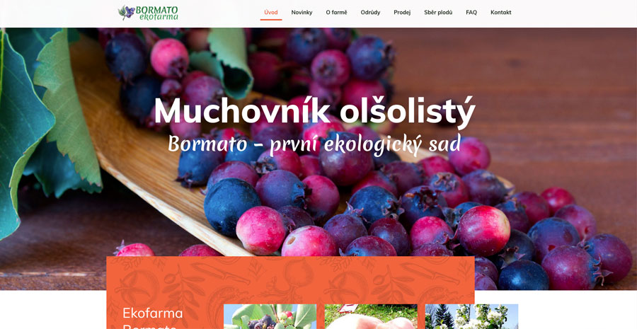 bormat_webo