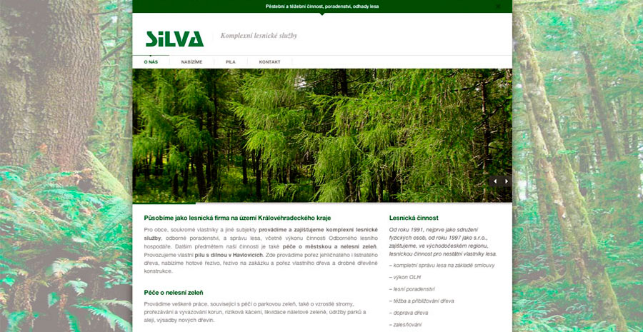 silva_web_n